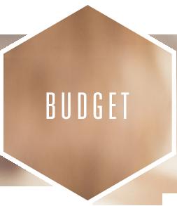 vld-budget